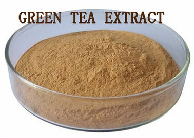 Leaves Green Tea Polyphenols Powder Blood Pressure Reducing Anti Radiation