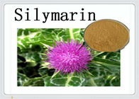 Pharmaceutical Milk Thistle Extract Silymarin 22888 70 6 Silybin 65666 07 1
