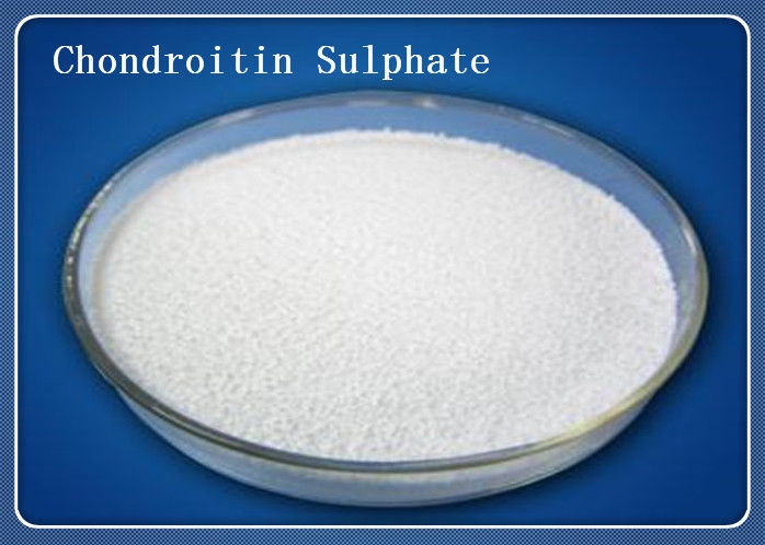Porcine Source Chondroitin Sulfate Powder 9007 28 7 Pharmaceutical Grade White